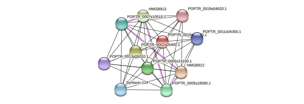 POPTR_0019s12670.1 protein (Populus trichocarpa) - STRING interaction network