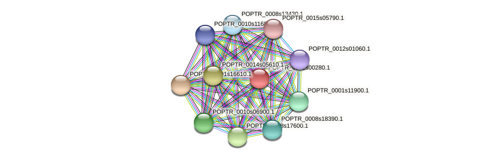 POPTR_0162s00280.1 protein (Populus trichocarpa) - STRING interaction network