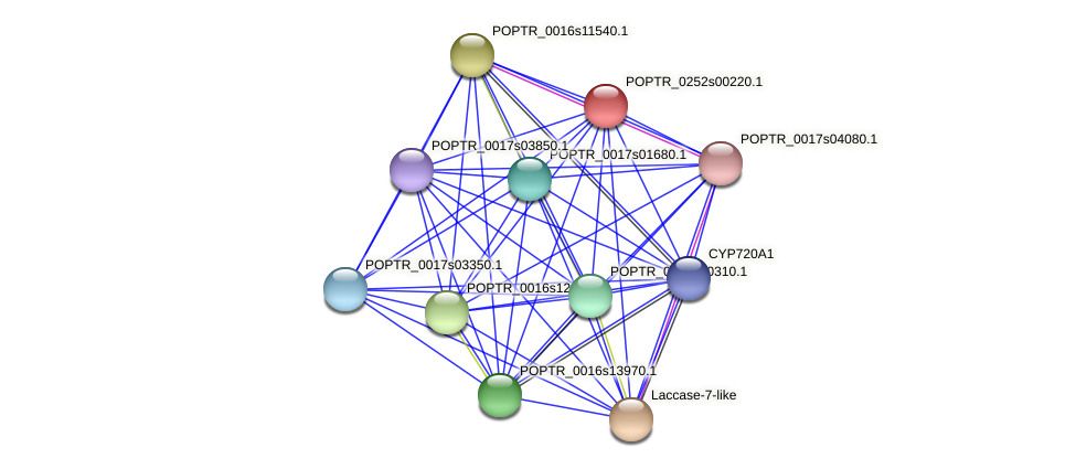 POPTR_0252s00220.1 protein (Populus trichocarpa) - STRING interaction network