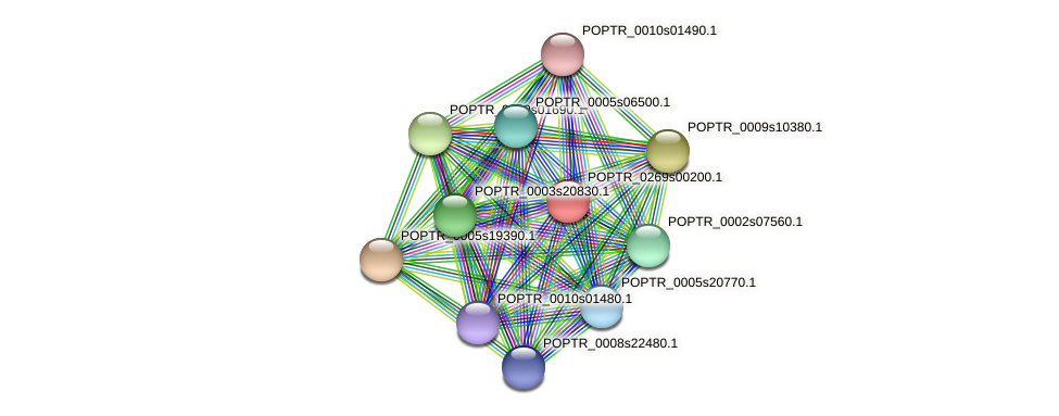 POPTR_0269s00200.1 protein (Populus trichocarpa) - STRING interaction network