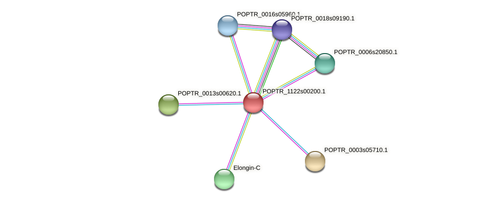POPTR_1122s00200.1 protein (Populus trichocarpa) - STRING interaction network