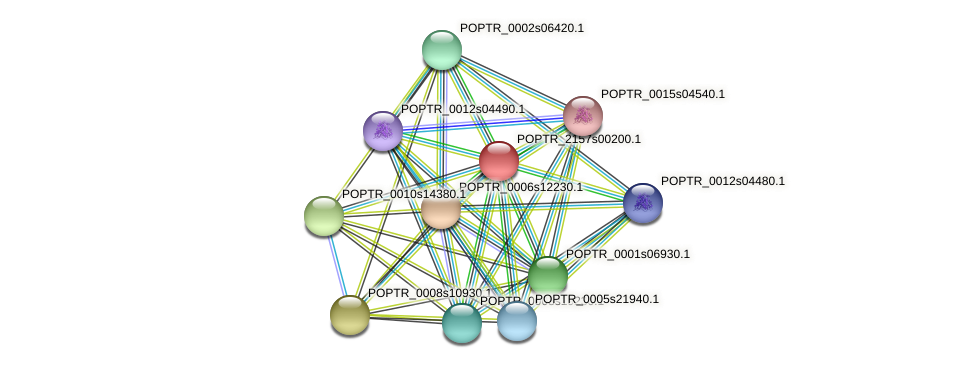 POPTR_2157s00200.1 protein (Populus trichocarpa) - STRING interaction network