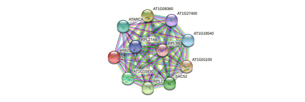 emb2386 protein (Arabidopsis thaliana) - STRING interaction network