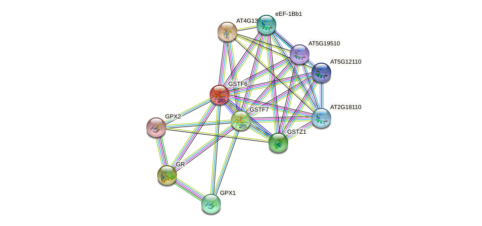 GSTF6 protein (Arabidopsis thaliana) - STRING interaction network