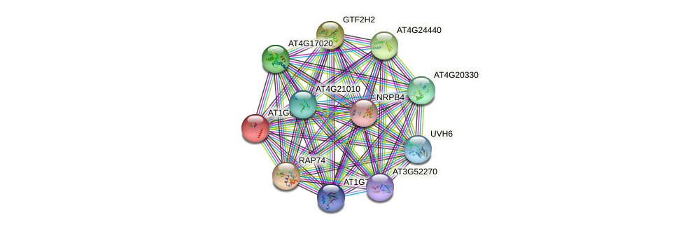 AT1G03280 protein (Arabidopsis thaliana) - STRING interaction network