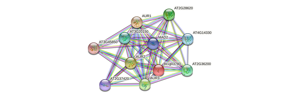 At1g03780 protein (Arabidopsis thaliana) - STRING interaction network