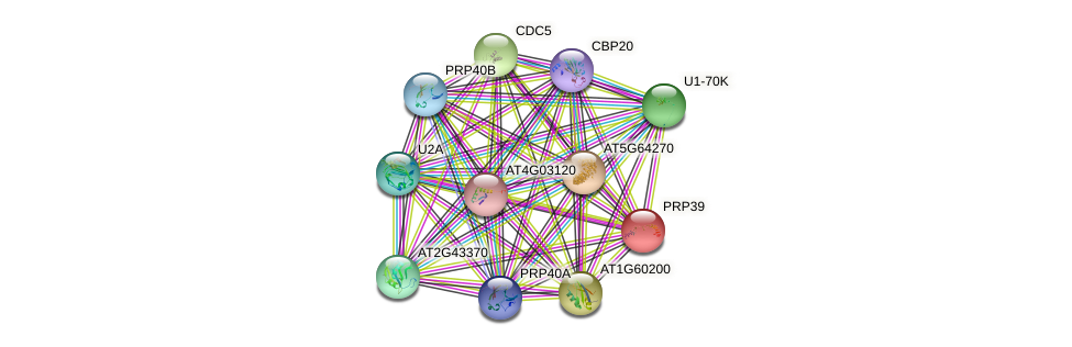 PRP39 protein (Arabidopsis thaliana) - STRING interaction network