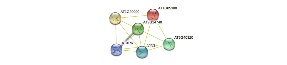 AT1G05380 protein (Arabidopsis thaliana) - STRING interaction network