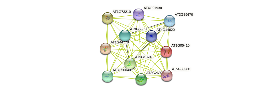 AT1G05410 protein (Arabidopsis thaliana) - STRING interaction network