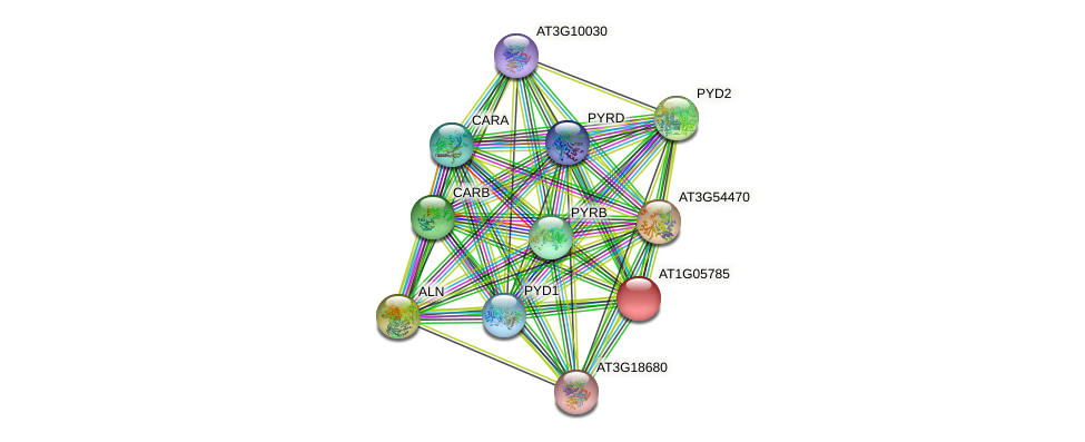 AT1G05785 protein (Arabidopsis thaliana) - STRING interaction network