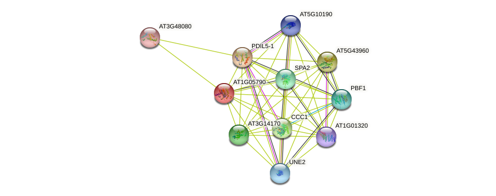 AT1G05790 protein (Arabidopsis thaliana) - STRING interaction network