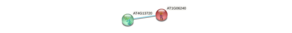 AT1G06240 protein (Arabidopsis thaliana) - STRING interaction network