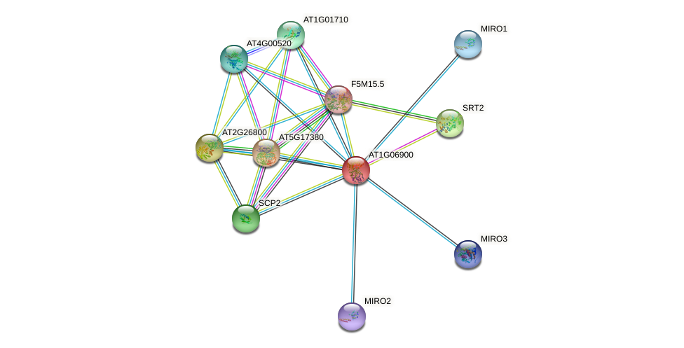 AT1G06900 protein (Arabidopsis thaliana) - STRING interaction network
