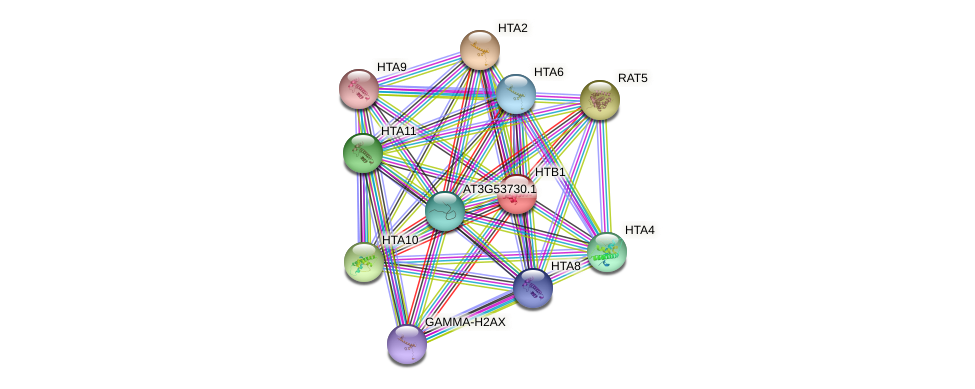 HTB1 protein (Arabidopsis thaliana) - STRING interaction network