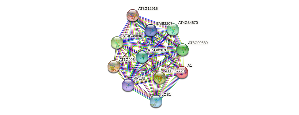AT1G07920 protein (Arabidopsis thaliana) - STRING interaction network