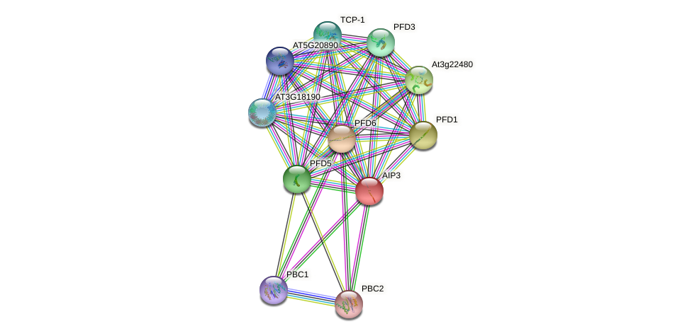 AIP3 protein (Arabidopsis thaliana) - STRING interaction network