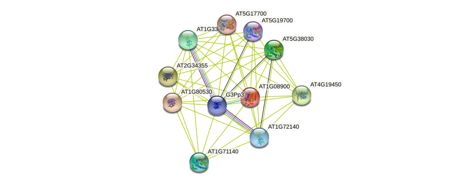 AT1G08900 protein (Arabidopsis thaliana) - STRING interaction network