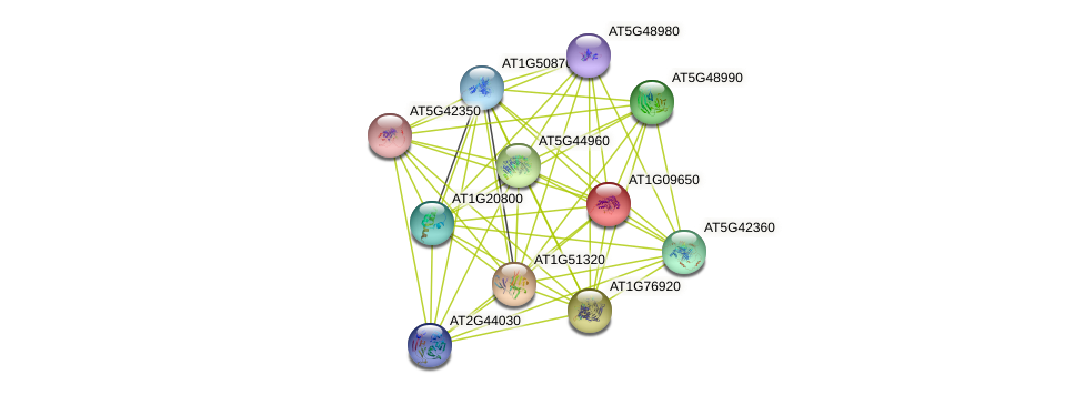 AT1G09650 protein (Arabidopsis thaliana) - STRING interaction network