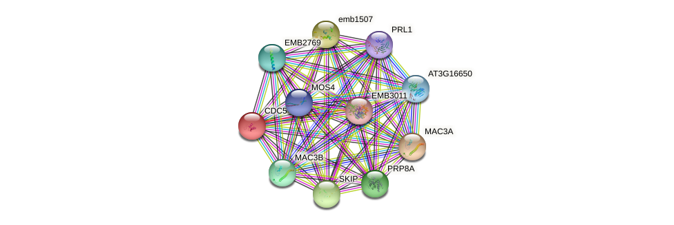CDC5 protein (Arabidopsis thaliana) - STRING interaction network