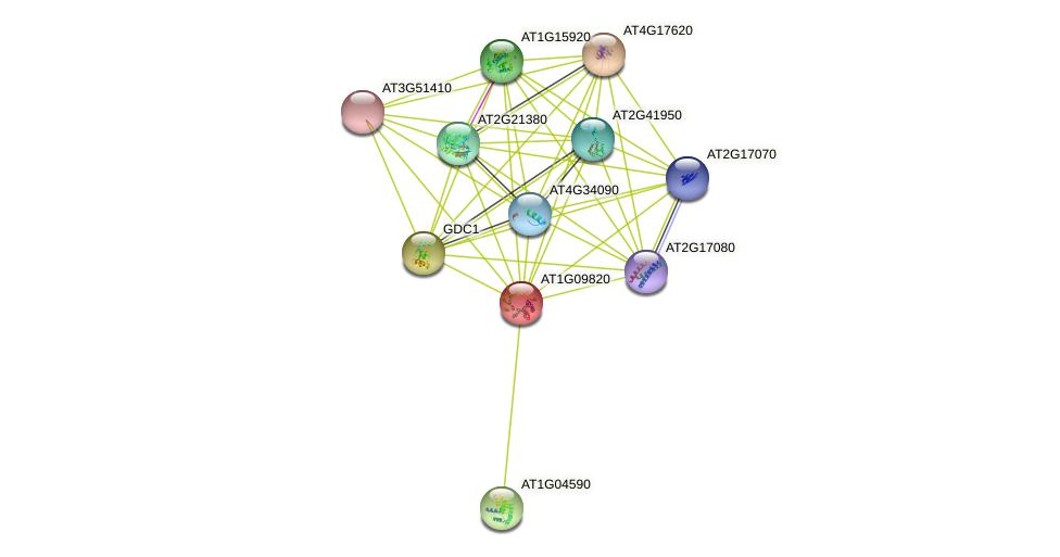 AT1G09820 protein (Arabidopsis thaliana) - STRING interaction network