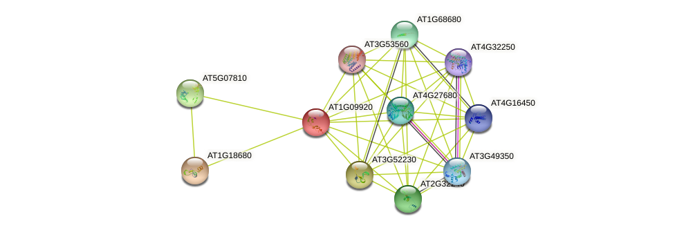 AT1G09920 protein (Arabidopsis thaliana) - STRING interaction network