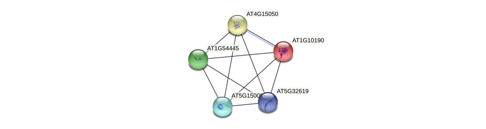 AT1G10190 protein (Arabidopsis thaliana) - STRING interaction network