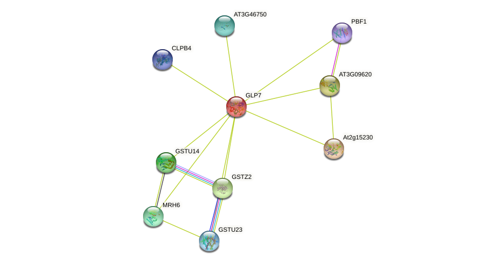 GLP7 protein (Arabidopsis thaliana) - STRING interaction network