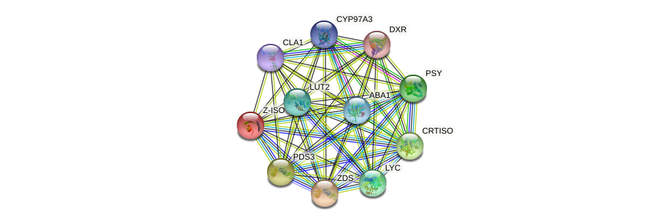 Z-ISO protein (Arabidopsis thaliana) - STRING interaction network