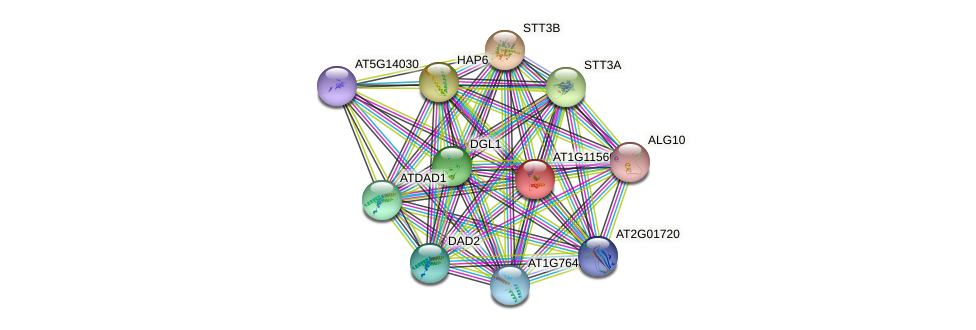 AT1G11560 protein (Arabidopsis thaliana) - STRING interaction network
