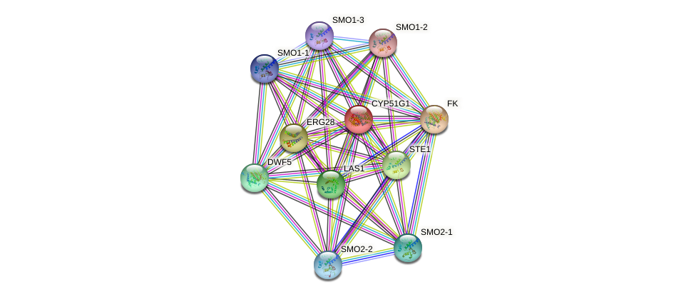 CYP51G1 protein (Arabidopsis thaliana) - STRING interaction network