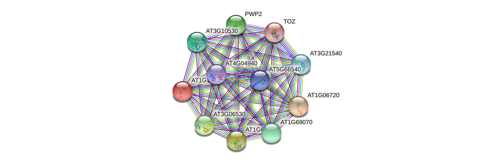 AT1G12800 protein (Arabidopsis thaliana) - STRING interaction network
