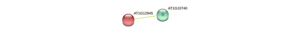 AT1G12845 protein (Arabidopsis thaliana) - STRING interaction network