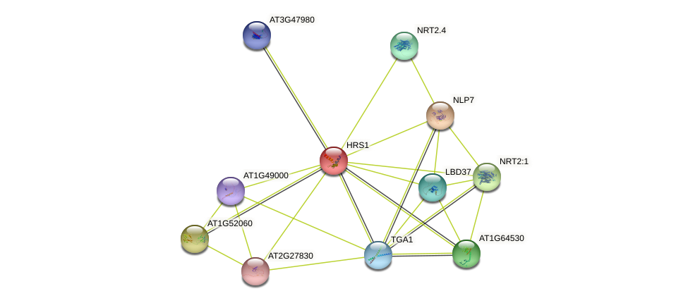 T6J4.6 protein (Arabidopsis thaliana) - STRING interaction network