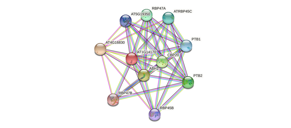 AT1G14170 protein (Arabidopsis thaliana) - STRING interaction network
