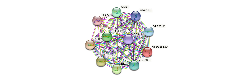 AT1G15130 protein (Arabidopsis thaliana) - STRING interaction network
