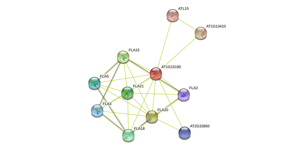 AT1G15190 protein (Arabidopsis thaliana) - STRING interaction network