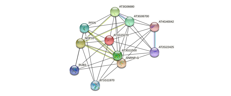 AT1G15270 protein (Arabidopsis thaliana) - STRING interaction network