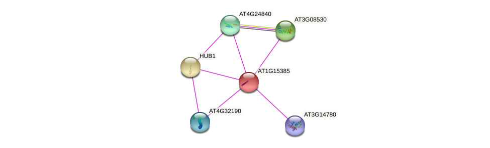 AT1G15385 protein (Arabidopsis thaliana) - STRING interaction network