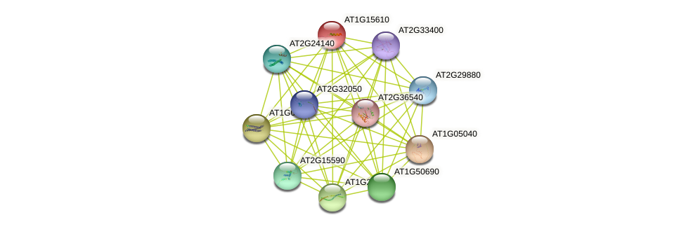 AT1G15610 protein (Arabidopsis thaliana) - STRING interaction network