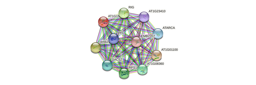 AT1G15930 protein (Arabidopsis thaliana) - STRING interaction network