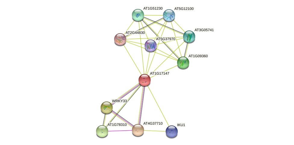 AT1G17147 protein (Arabidopsis thaliana) - STRING interaction network