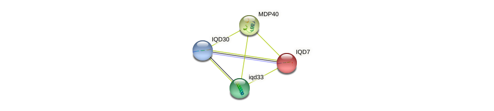 IQD7 protein (Arabidopsis thaliana) - STRING interaction network