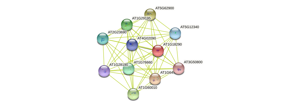 AT1G18290 protein (Arabidopsis thaliana) - STRING interaction network