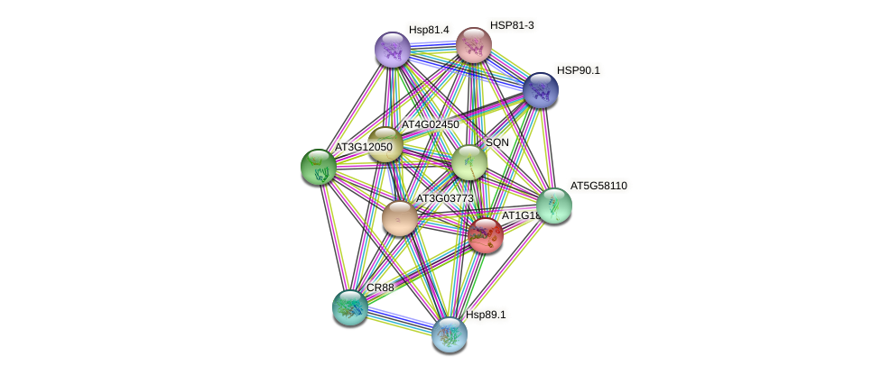 AT1G18660 protein (Arabidopsis thaliana) - STRING interaction network