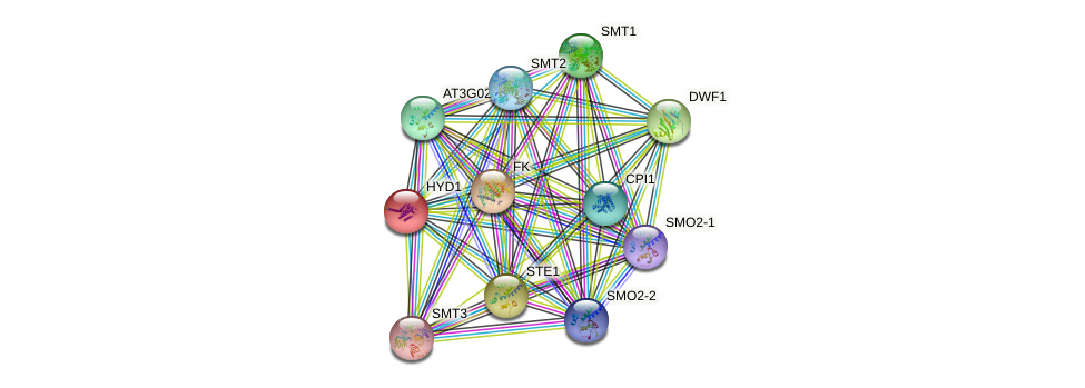 HYD1 protein (Arabidopsis thaliana) - STRING interaction network