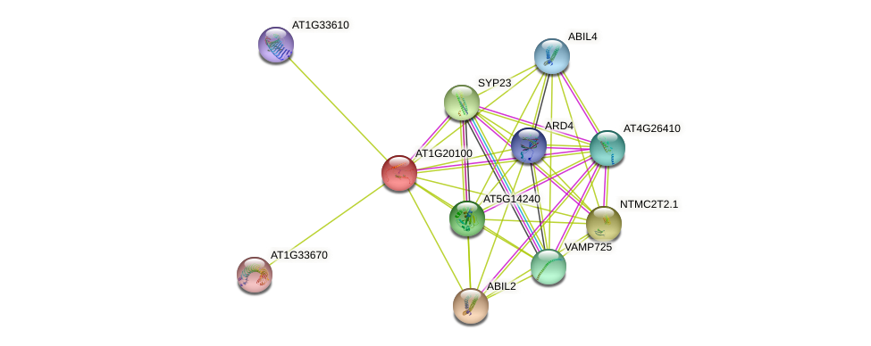AT1G20100 protein (Arabidopsis thaliana) - STRING interaction network