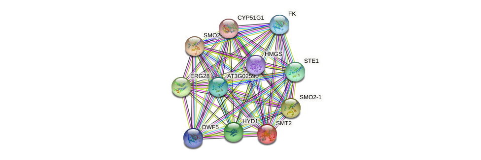 SMT2 protein (Arabidopsis thaliana) - STRING interaction network