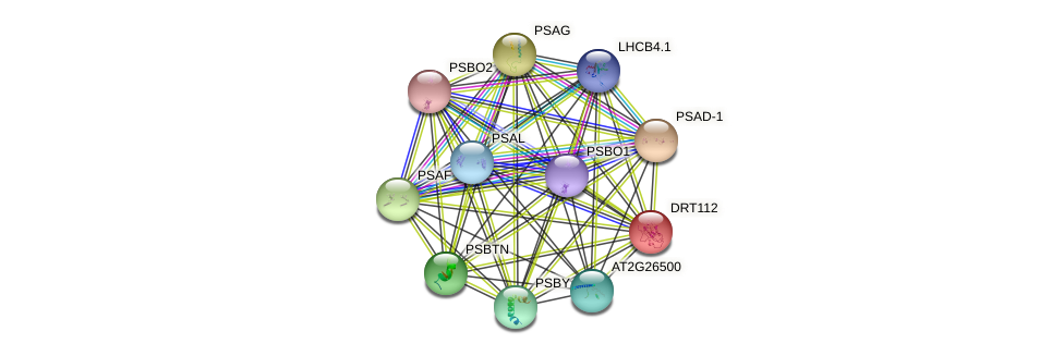 DRT112 protein (Arabidopsis thaliana) - STRING interaction network