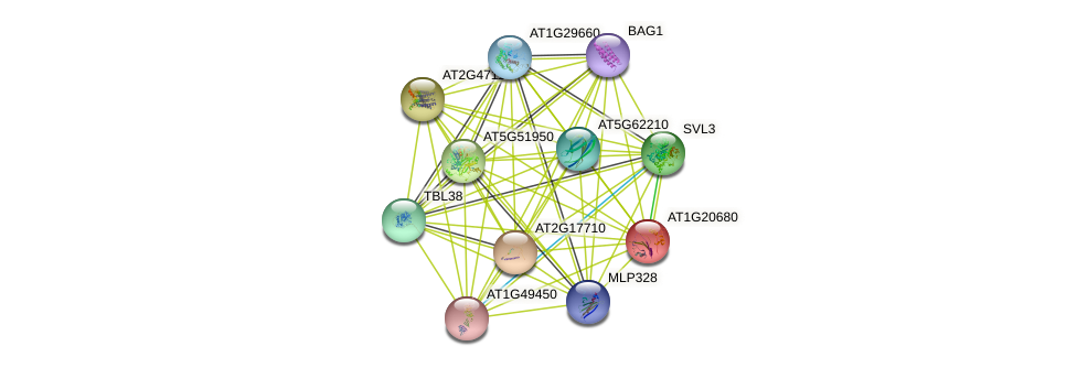 AT1G20680 protein (Arabidopsis thaliana) - STRING interaction network