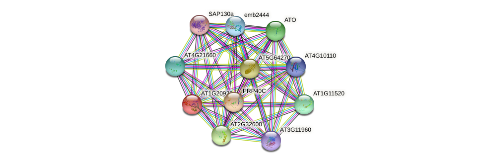 AT1G20920 protein (Arabidopsis thaliana) - STRING interaction network